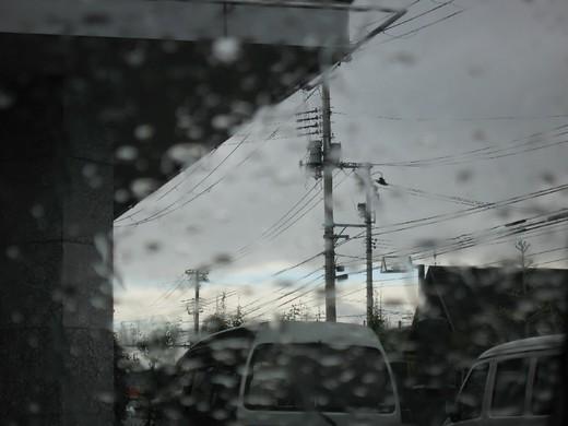 雨の日の光景