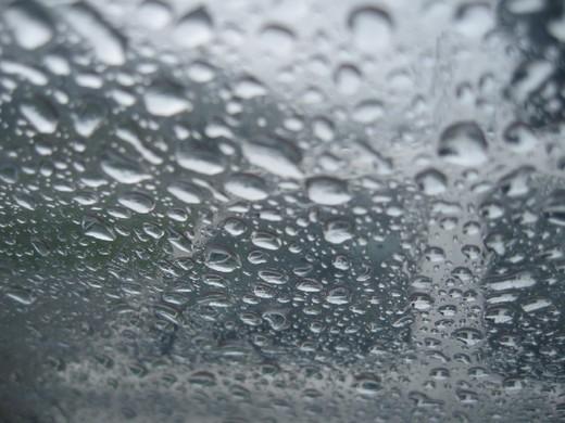今日も雨降りです