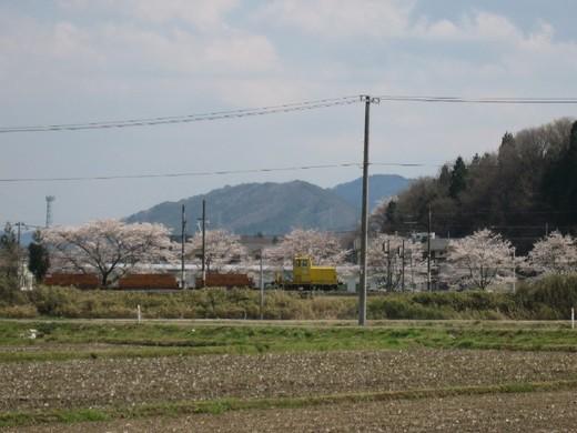 桜の下の作業車両